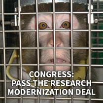 Congress: Pass The Research Modernization Deal