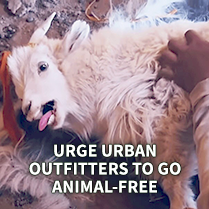 Urge Urban Outfitters To Go Animal-Free